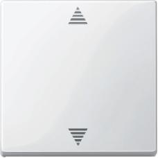 MTN587719 - Blind push-button polar white glossy System M, Schneider Electric